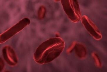 Менструальная кровь оказалась способна лечить травмы и ожоги