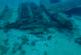 Сокровища, поглощенные морем. Сенсационные открытия подводных археологов