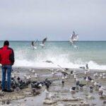 В Германии назвали водную блокаду Крыма «средневековыми методами осады»