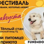 В Москве пройдет благотворительный фестиваль-пристройство собак и кошек