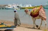 Отдохнувшая в Египте россиянка пожаловалась на творящийся там «дурдом»